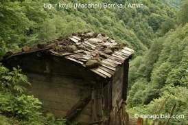 Taşköprü yanı Güzelyurt köyü Borçka Artvin