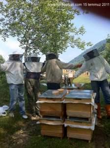 Demirciler köyündeki bal sağım günü